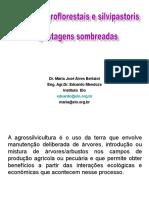 2016CFABmodulo3_Pastos sombreados.ppt