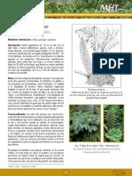7d99ff5a5811dbd7e04001011f016dc3.pdf
