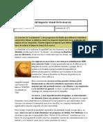 Visual Branding (1).docx