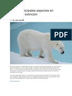 Documental Las 10 Principales Especies en Peligro de Extinción