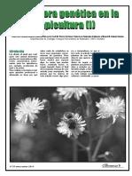 2010_Mejora_abejas_1_El_Colmenar.pdf
