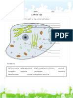 Step 3 Science Animal-cell-diagram
