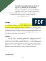 Caracterizacion y Depuracion Biologica Anaerobia de Efluentes Matadero