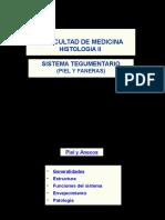 Histología II 2ª Unid Piel y Anexos