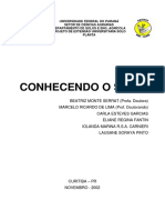 Conhecendo Solo.pdf