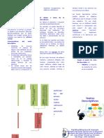 Descriptivo-Triptico1.docx