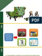OGM vs Biodiversidad