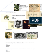 Imagenes Botanicas