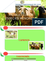 Caracteristicas de Los Caprinos (1)