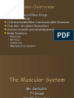 The Muscular System(1)