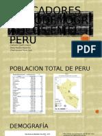 indicadores sociodemograficos en peru 2015