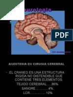 neurologia2010-100608232347-phpapp01