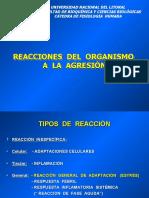 reaccionesdelorganismoalaagresin-090804135730-phpapp02