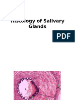 Histology Glands 5-2-15