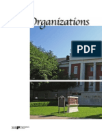organizations section divider