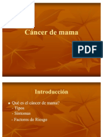 Cancer de Mama-1