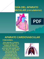 Fisiologc3ada Del Aparato Cardiovascular Circulatorio