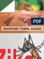 Sindrome Febril Agudo, Dengue, Chijunguya y Zika