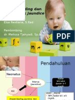 Breast-feeding Dan Breast Milk Jaundice