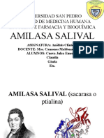 AMILASA SALIVAL (Sacarasa o Ptialina)