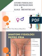 Fisiologi Haid Review Anfis Reproduksi