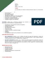 RESUMO DE HIDROLOGIA (IMPRIMIR).docx