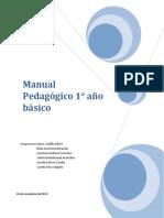 PAUTA PEDAGÓGICA.pdf