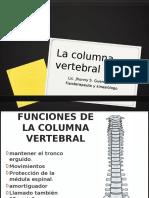 La Columna Vertebral y Sus Patologias