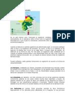 Vegetación de Venezuela.docx