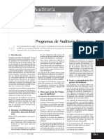 programas auditoria financiera.pdf