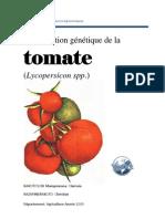 Amélioration de la tomate