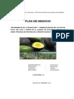 PLAN DE NEGOCIO HUAYOPATA-.docx