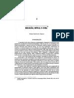 Religião ritual e cura.pdf