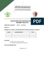 Histologia II Guia de Practica 3ª Unidad1