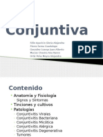 conjuntiva-111001185739-phpapp02(2).pptx