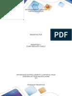 Instrumentacion_Puentes
