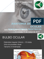Anatomia do bulbo ocular