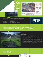 PRECIPITACIÓN MEDIA DE UNA CUENCA.pdf.pdf
