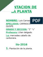 Plantacion de La Planta