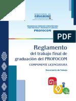 REG. TRABAJO FINAL SISTEMATIZACIÓN.pdf