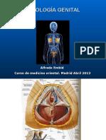 Patología Genital Ex. 2013
