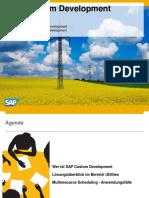 SAP Custom Development for Utilities