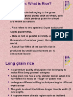 Presentation on RICE