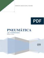 PNEU.pdf