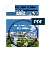 Sistema de Gestion.pdf