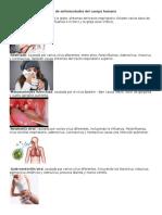 Tipos de Enfermedades Del Cuerpo Humano