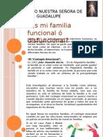 Familiafuncionalyfamiliadisfuncional 150420215242 Conversion Gate02