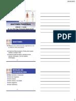 Anatomía Funcional - Unidad 1