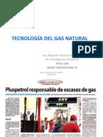 TECNOLOGÍA DEL GAS NATURAL-alumnos ica.pdf