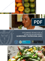 Documento Tecnico Situacion133220313